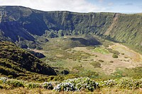 Inside of Caldeira volcano in Faial, Azores