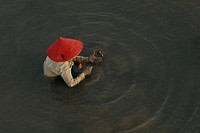 A woman collecting oysters in Krueng Cut River, Banda Aceh, Indonesia August 30, 2007