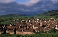 Riquewihr, Alsace, France, Europe, village, medieval, vineyards