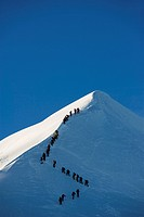 Long line of climbers on summit ridge of Mont Blanc, 4810m, Chamonix, French Alps, France, Europe