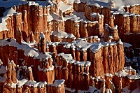 Hoodoos with fresh snow, Bryce Canyon National Park, Utah, United States of America, North America