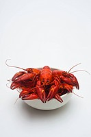 Cooked crayfish, Paranephrops planifron