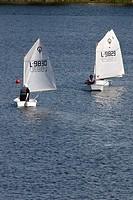 optimist sailing dinghies
