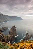 Cape Ortegal - Cabo Ortegal -, A Coruña, Galicia, Spain