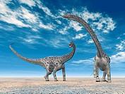 Dinosaurier Diplodocus