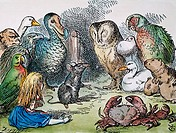 CARROLL: ALICE, 1865.All the birds and animals 'sat down at once': after the design by Sir John Tenniel for the first edition of Lewis Carroll's Alice...
