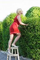 Side view of mature woman on footstool peeking over hedge
