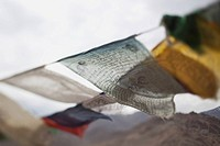 indian prayer flags blowing in the wind, leh, ladak, india