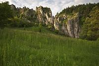 Limestone Valley, Bolechowice, Malopolska, Poland