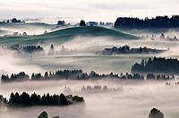 Autumn mist clears from rolling hills of Allgaeu region as near village of Eisenberg, Bavaria, Germany