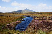Water Source In Irish Bog, Achill Island, County Mayo, Ireland