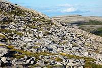 Rocky Karst_Landscape, The Burren, County Clare, Ireland