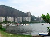 Pond Rodrigues Freitas, City, Rio de Janeiro, Brazil