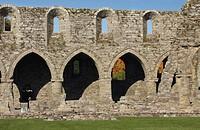 jerpoint abbey in leinster region, county kilkenny, ireland