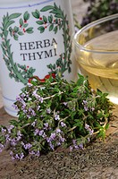 Cup, of, Thyme, tea, Large, Thyme, Thymus, pulegioides,