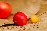 Crabapples, and, characters, Malus, spec.,