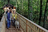 BLIND AND PARTIALLY_SIGHTED PEOPLE ON THE ACCESS RAMP, TREEHOUSE WITH ACCESS FOR THE HANDICAPPED, CHAMPROND_EN_GATINE, DOMAINE DU BOIS LANDRY, PERCHE,...