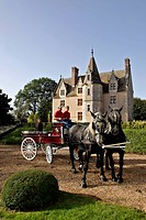 HARNESSED PERCHERON HORSES, THE MANOR OF THE GRAND PRAINVILLE, SAINT_JEAN_PIERRE_FIXTE, EURE_ET_LOIR 28, FRANCE