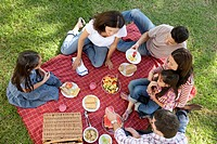 Group of people with kids 5_6,10_12,16_17 having picnic