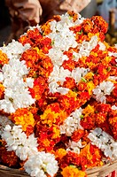 Indian flower garlands for sale outside temple in Mysore, Karnataka