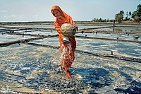A woman watering at salt plantation field at Bashkhali It is one of the oldest and most ubiquitous of food seasonings and used to preserve food Salt i...