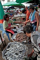 FRESH AND DRIED FISH SELLER, MARKET IN BANG SAPHAN, THAILAND, ASIA