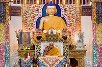 His holiness the Dalai Lama during teachings at Namgyal Monastery,in Tsuglagkhang complex  McLeod Ganj, Dharamsala, Himachal Pradesh state, India, Asi...