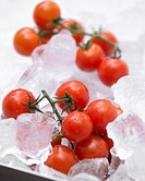 Cherry tomatoes on ice cubes