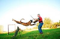 belgian shepherd attack