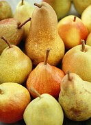 Various types of pears filling the picture