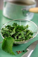 Chopped nettle leaves