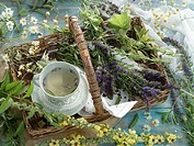 A cup of hyssop tea and various tea herbs in a basket