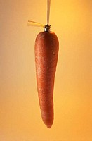 Carrot suspended by a string