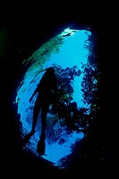 Person snorkeling underwater