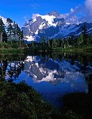 Picture Lake, Mt Shuksan, North Cascades National Park, Mt Baker_Snoqualmie National Forest, Washington State, USA