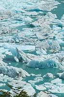 Argentina, Patagonia, Parque Nacional Los Glaciares, Ice floes on the Canal de los Tempanos