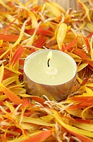 Candle burning near flower petals