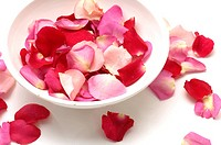 Rose petals in a bowl