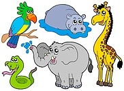 Wildlife animals collection _ isolated illustration.
