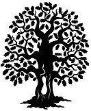 Oak tree silhouette _ isolated illustration.