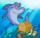 Shark with tresure chest _ color illustration.