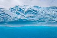 Iceberg in the sea, South Georgia Island, South Sandwich Islands