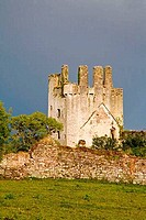 Ruins of a castle, Kilcash Castle, County Tipperary, Munster Province, Ireland