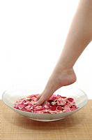 Close_up of a woman's leg in a bowl containing rose petals