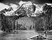 Fisherman standing on half submerged tree in a lake and fishing, Leigh Lake, Grand Teton National Park, Wyoming, USA