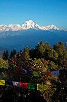 Prayer flags with mountain range in the background, Dhaulagiri, Annapurna Sanctuary, Himalayas, Nepal
