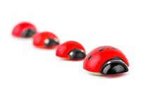 Toy ladybirds