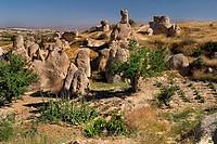 Turkey, Cappadocia, Goreme, View of sword valley