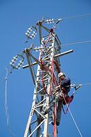 operaio lavora su un pilone, centrale elettrica a pannelli solari, zona di vulci, provincia di viterbo, lazio, italia, europa