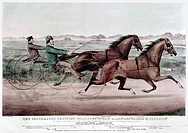 TROTTING STALLIONS, 1858.'The Celebrated Trotting Stallions Ethan Allen and George M. Patchen.' American lithograph by Currier & Ives, 1858.
